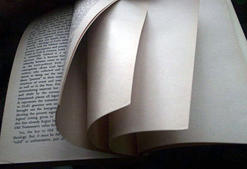 350px-Blank_page_intentionally_end_of_book